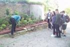 Exkurze v Zámeckém zahradnictví 2017